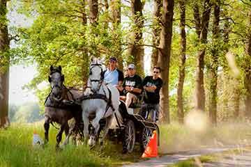 paardenmennen | bedrijfsuitjes in twente s